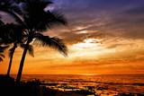 Fototapety Hawaiian sunset with tropical palm tree silhouettes
