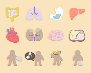flat design -  icons for health and medical