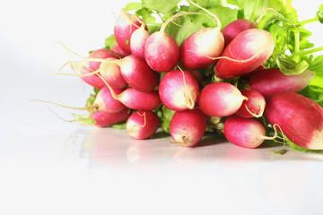 radishes on a white background