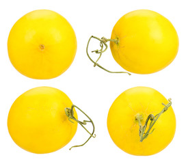 yellow melon