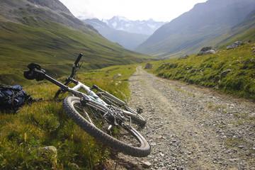 Erkunden der Schweizer Alpen mit dem Mountain Bike