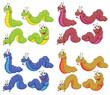 A group of caterpillars