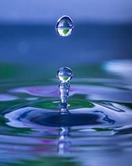 Water droplet splashing into water surface