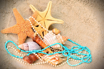 морские раковины и жемчуг