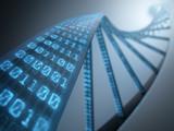 DNA Binary