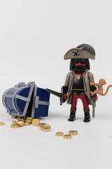 Chef pirates avec trésor et singe