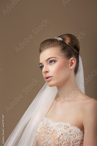 Classy Elegant Woman with Veil Looking Up
