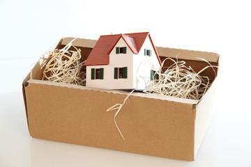 carton maison