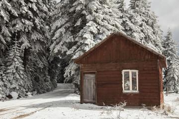 cabin in the Bolu mountains