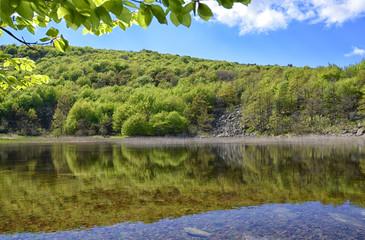 Laione Peat Bog-Italy