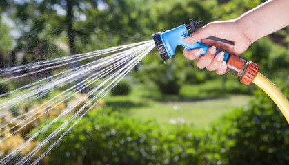 Woman's hand with hose pipe watering plants