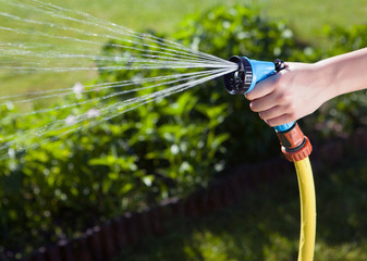 female hand watering the plants with a garden hose