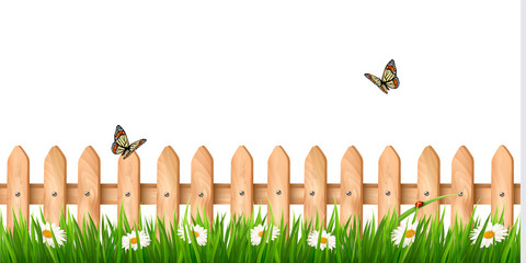 Background with a wooden fence with grass, flowers and butterfli
