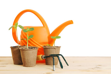 Pots with seedlings and watering can isolated over white backgro