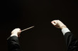 Concert conductorwith a baton isolated on a black