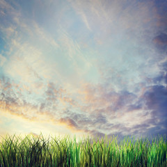 Dramatic summer landscape with sunset cloudy sky and grass