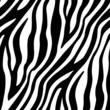 Zebra Stripes Seamless Pattern - 64812778