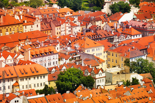 Fototapeta View on red roofs with tile in Prague