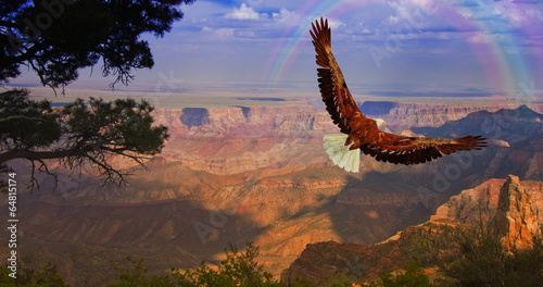 Leinwanddruck Bild Eagle takes flight over Grand Canyon USA