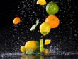Citrus fruit in water splash on black background