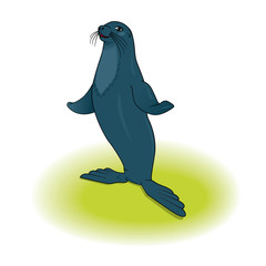 vector sea lion standing on flippers