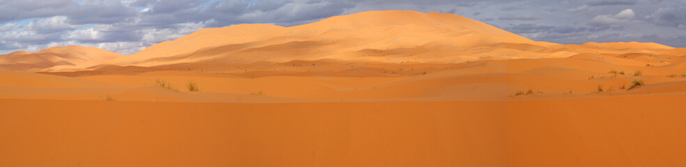 Sand dunes in panoramic overview
