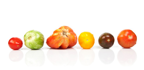 different tomatoes shapes and colors