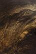 Leinwandbild Motiv gold background