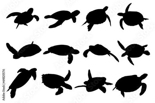 Turtle Vector Silhouettes - 64820576