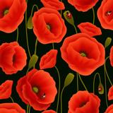 Fototapety Poppy seamless pattern