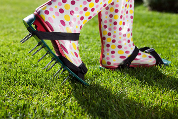 Woman wearing spiked lawn revitalizing aerating shoes