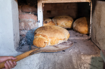 Detail of fresh traditionally baked bread.