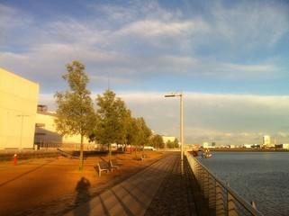 Abendsonne am Ufer