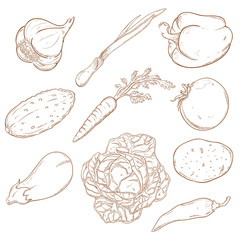 Collection of icons with vegetables