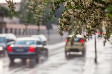 Stadtverkehr bei Regen