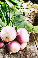 Fresh turnips with green tops