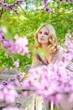 in spring flowers garden