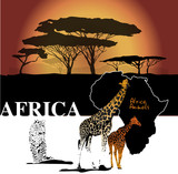 Color africa backgroudn with map, giraffes, leopard and trees