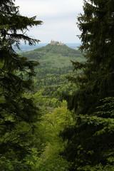 Blick auf die Burg Hohenzollern im Frühjahr (durch den Wald)
