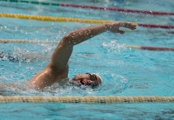 swimmer free style