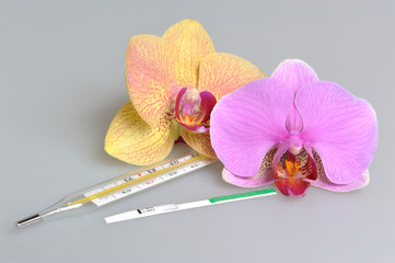 Mercury thermometer, ovulation test with two orchid flowers on g