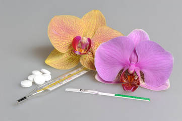 Pills, mercury thermometer, ovulation test, two orchid flowers o