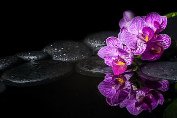 Beautiful spa setting of stripped orchid (phalaenopsis), zen sto