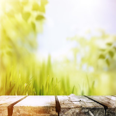 Beauty summer afternoon, abstract environmental backgrounds
