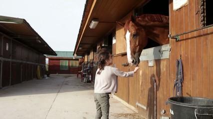 Niña acercándose a cuadra y acariciando caballo