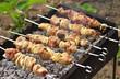 Pork Shish kebab on Fire. Appetizing fresh meat shish kebab prep