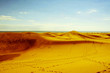 Natural Reserve of Dunes of Maspalomas, in Gran Canaria, Spain,