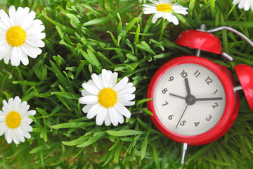 Red clock on green grass with flowers background