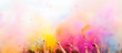 Colorful holi Party - 64863304