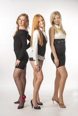 Three beautiful sexy girl on white background